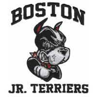 China custom Embroiery digitizing Boston Jr. Terriers WFO11B07 designs services on sale