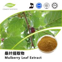 Quality Manufacturer Supply Mulberry Leaf Extract 1-DNJ Powder 1%~5% Yellow Brown Powder for sale