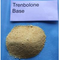 Buy cheap CAS 10161-33-8 Cook Conversion Injectable Anabolic Steroids Hormones Trenbolone Base product