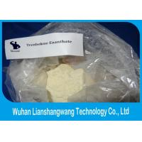 China Healthy Trenbolone Enanthate Powder Legal Muscle Steroid Cutting Cycle CAS 472-61-546 wholesale