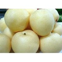 Buy cheap Fruit Series golden pear from wholesalers