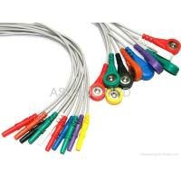 DIN Style 10-Ld wires