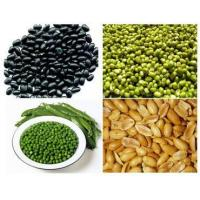 China Beans from Vietnam on sale