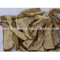 China Boletus edulis slice on sale
