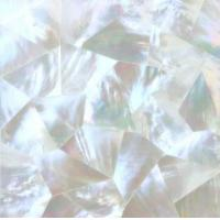 China Mother of Pearl Shell Tile wholesale