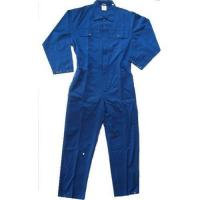 Industrial overall