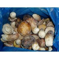Buy cheap Frozen Mushroom IQF Boletus Edulis-Whole TC0205-1 product