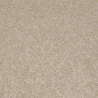 Carpet Bewitched II by BUILDER FLOORING