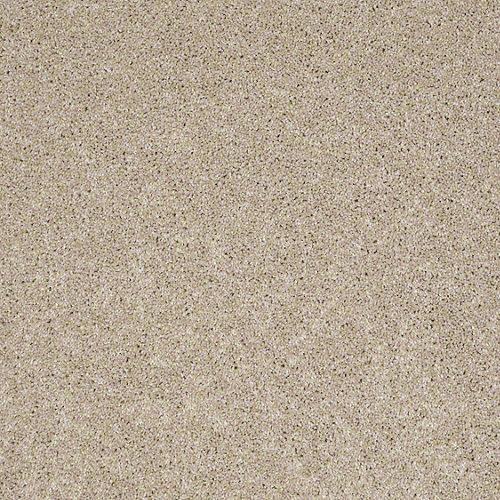 Quality Carpet Bewitched II by BUILDER FLOORING for sale
