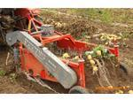 China Harvester Mounted Potato harvester on sale