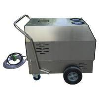 Hot And Cold Water And Steam Cleaner