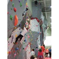 China Climbing holds Indoor rock climbing wall jugs on sale