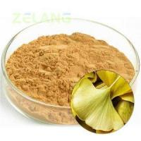 Buy cheap Ginkgo Biloba Extract 24:6 Normal product