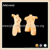 Buy cheap Model of Surgical suture dressing 3d anatomy model product