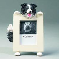 Dog Picture Frame - Border Collie, Small