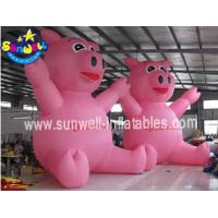 Inflatable Model SW-MD028