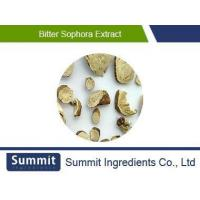 China Bitter Sophora Root Extract 5:1, Radix Flavescentis Extract, Shrubby Sophora Extract on sale