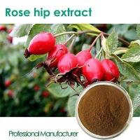 Buy cheap High quality Vitamin C 500mg with Rose Hips chewable product