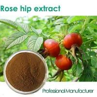 Buy cheap Factory Rosehip Seed Oil,Rose Hips Seed Oil , Rose Hips Oil product