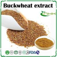 Buy cheap Buckwheat Extract, Tartary Wheat Flavone, Buckwheat Flavonoids from wholesalers
