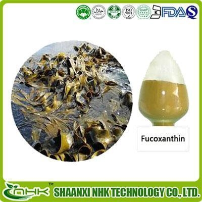 Quality Fucoxanthin for sale