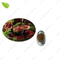 Buy cheap Ganoderma Extract >herbal extract product