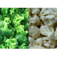 Buy cheap IQF Broccoli Cauliflower from wholesalers