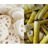 Buy cheap IQF Lotus bamboo shoot root from wholesalers