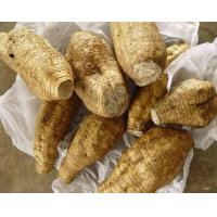 Buy cheap PuerariaExtract product