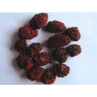 Buy cheap Freeze-dried blackberries product