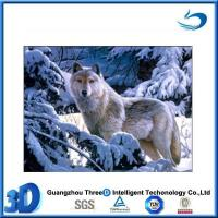 Wolf hot selling PET lenticular 3d animal pictures wolf
