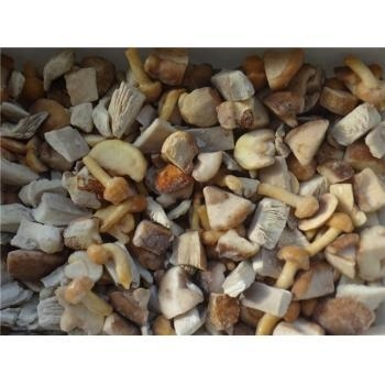 Quality Frozen Mushrooms Frozen Mixed Mushrooms GT4006 for sale