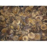 Buy cheap Frozen Mushrooms Frozen Boletus Luteus Whole GT4004 product