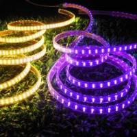 Buy cheap CE & RoHS approved! LED Strip Light SMD 5050 Double Row Purple product