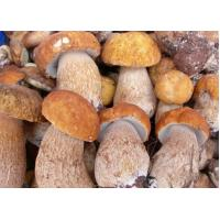 Buy cheap Fresh foods IQF Boletus Edulis product