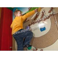 China Amusement Park Indoor 3D Climbing Wall on sale