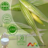Natural Avena Sativa Extract