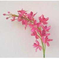 Buy cheap orchids stems VD8008 from wholesalers
