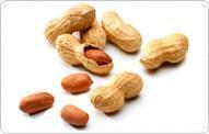 Buy cheap Peanut from wholesalers