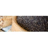 Buy cheap Vietnamese black pepper from wholesalers