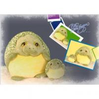 China Green Plush turtle toys on sale