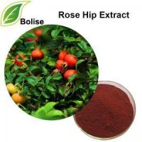 Buy cheap Rose Hip Extract(Rose Haw Extract) product