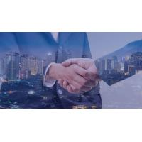 Buy cheap Limited Liability Company Incorporating A Business In Delaware Has An Efficient Registry from wholesalers