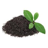 Buy cheap Darjeeling CTC Tea from wholesalers