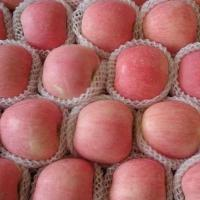 Buy cheap Fresh Fruits coconut fiber from wholesalers
